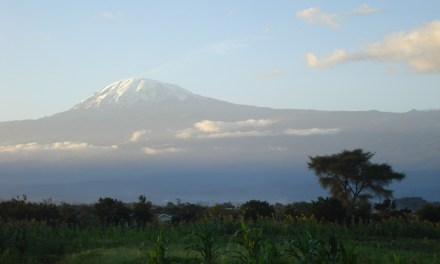 Lemosho Route 8 Day Kilimanjaro Climb, 2 Day  Hotel Stay