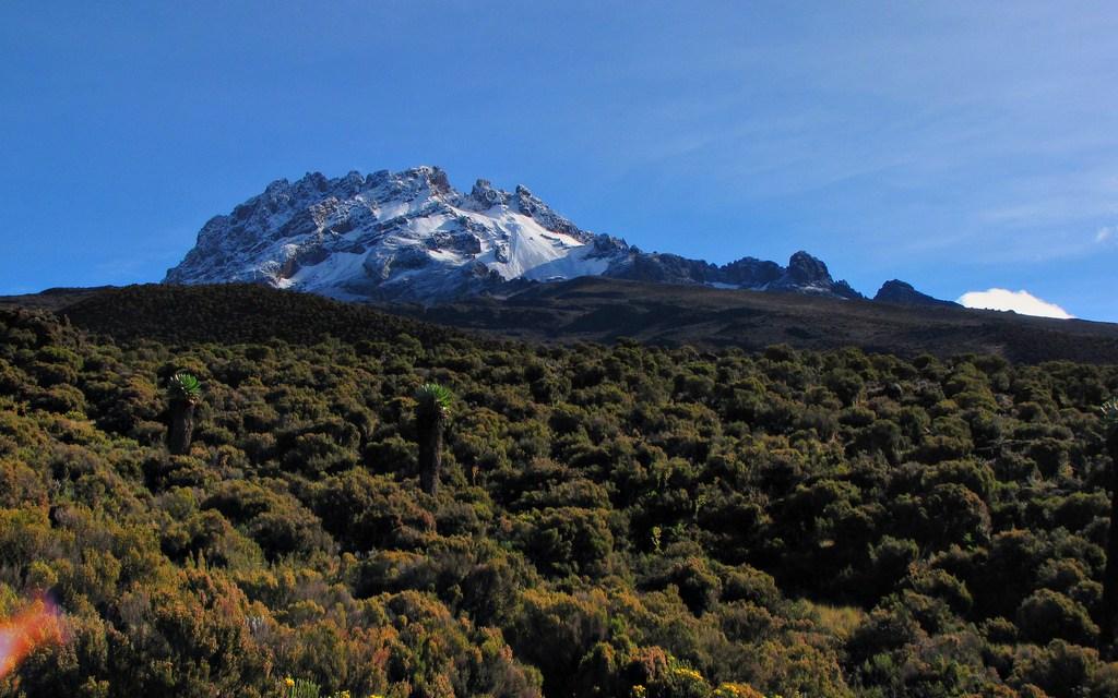 Kilimanjaro Climbing Umbwe Route 6 Days