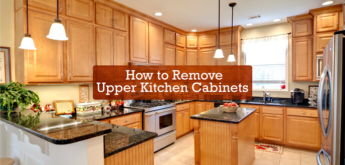 kitchen cabnits storage cabinets with doors how to remove upper budget dumpster