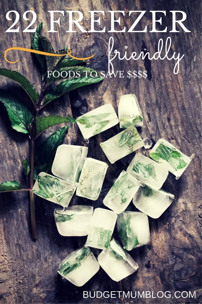 save money by freezing foods