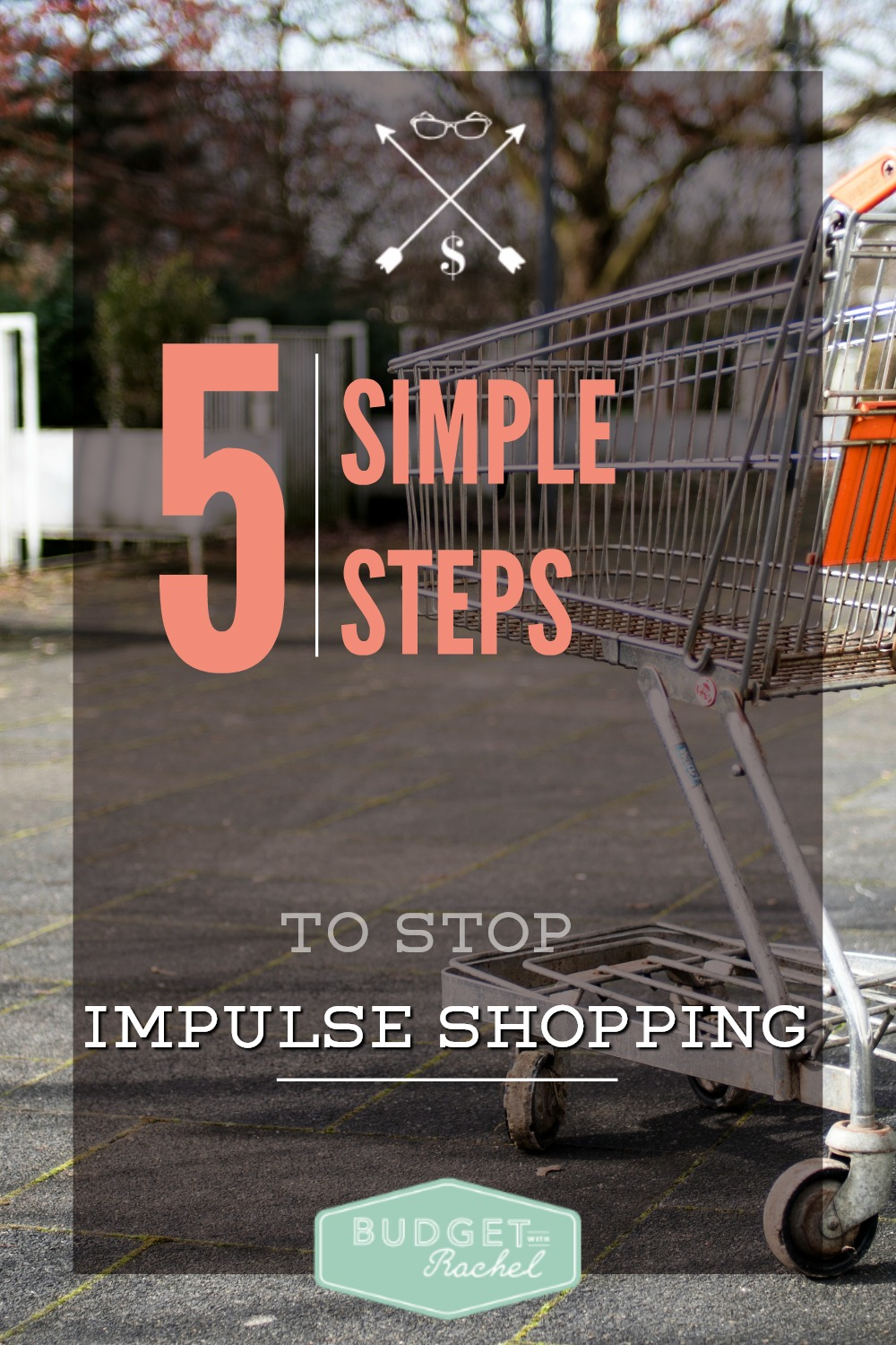 5 Questions To Ask Yourself Before You Hit the Checkout Lane (Self-Control Training For Impulse Shoppers). These steps are amazing! When I went shopping and went through these steps, I ended up not buying like half the stuff in my cart. All the steps are great, but #3 really made me think before making a purchase. I'm totally an impulse shopper and this has really helped! Love the picture download to keep with me while shopping!