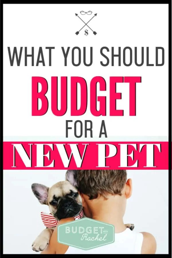 A new puppy can bring so much joy, but then there are the dreaded expenses that come along with it. Use this free checklist to make sure you have every expense budgeted for so you don't have to stress about money and you can just enjoy your new pet! #budgettips #pets #budget #freeprintables