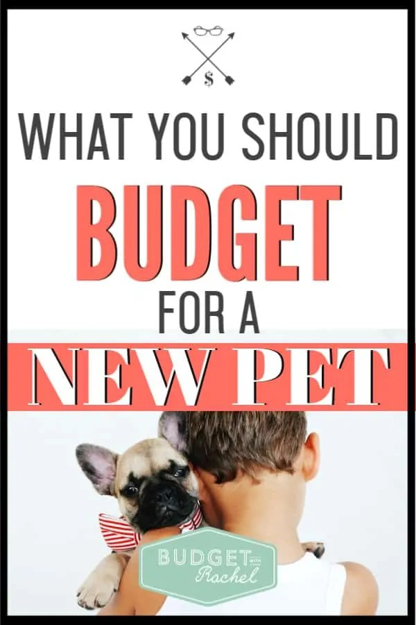 Pets are super fun! But they can also blow your budget if you don't plan for them. Learn exactly how to add a pet to your budget so they don't add any extra financial stress to your life. #budget #budgettips #financetips