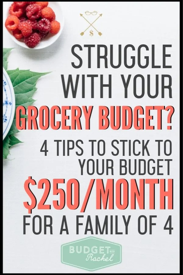 If you are trying to lower your grocery budget, these are the best 4 tips to help you do it! I feed my family of 4 for $250/month with these grocery budget tips. Start saving money on food today! #savemoney #moneysavingtips #budget