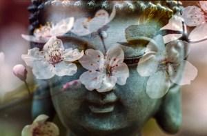 buddha-1279902_1280
