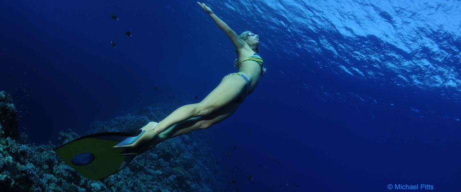 Discover your Depths – Seven insights for martial artists from a world record-holding freediver