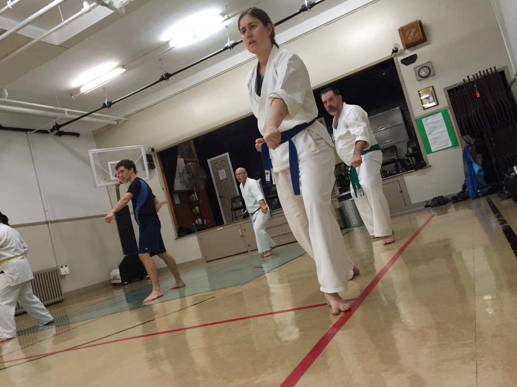 Karate-Do Shotokai dartmouth