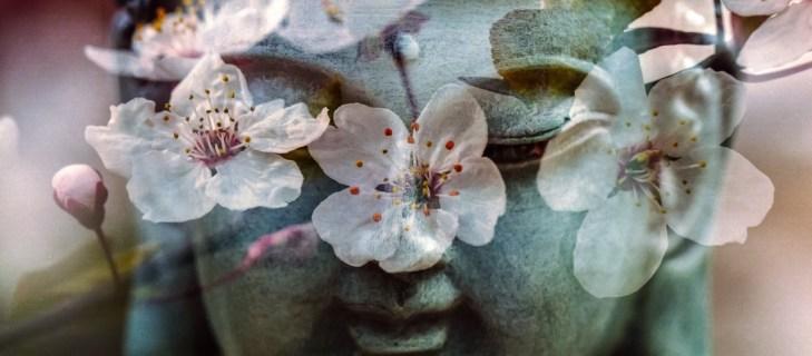 Дзэн-буддизм (Чань-буддизм)