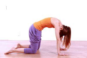 5 эффективных поз йоги от боли в спине - поза Кошка