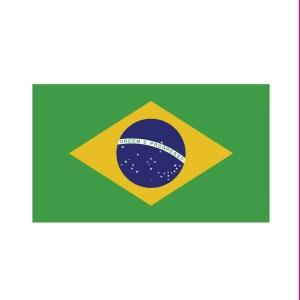 Bügelbild Brasilien Flagge