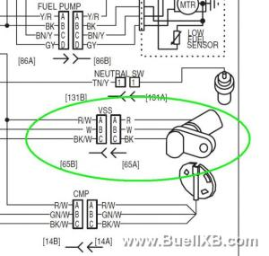 Download Buell Xb12s Service Manual Pdf  torrentinoindex