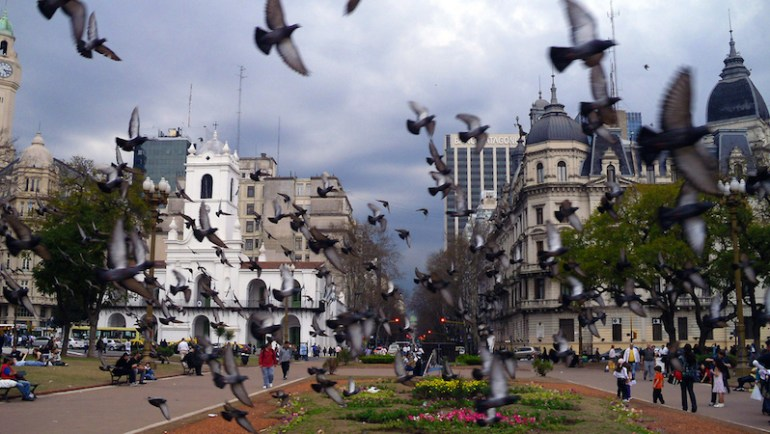 pombos buenos aires