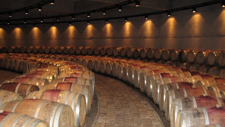 o que fazer em mendoza museu do vinho