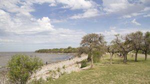 reserva costanera sur buenos aires argentina rio de la plata