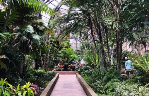 o que fazer em san diego balboa garden ponto turistico