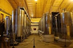 tanque vinhos familia geisse pinto bandeira vinicola