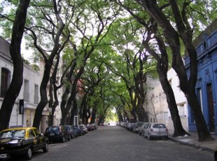 Image result for buenos aires architecture palermo
