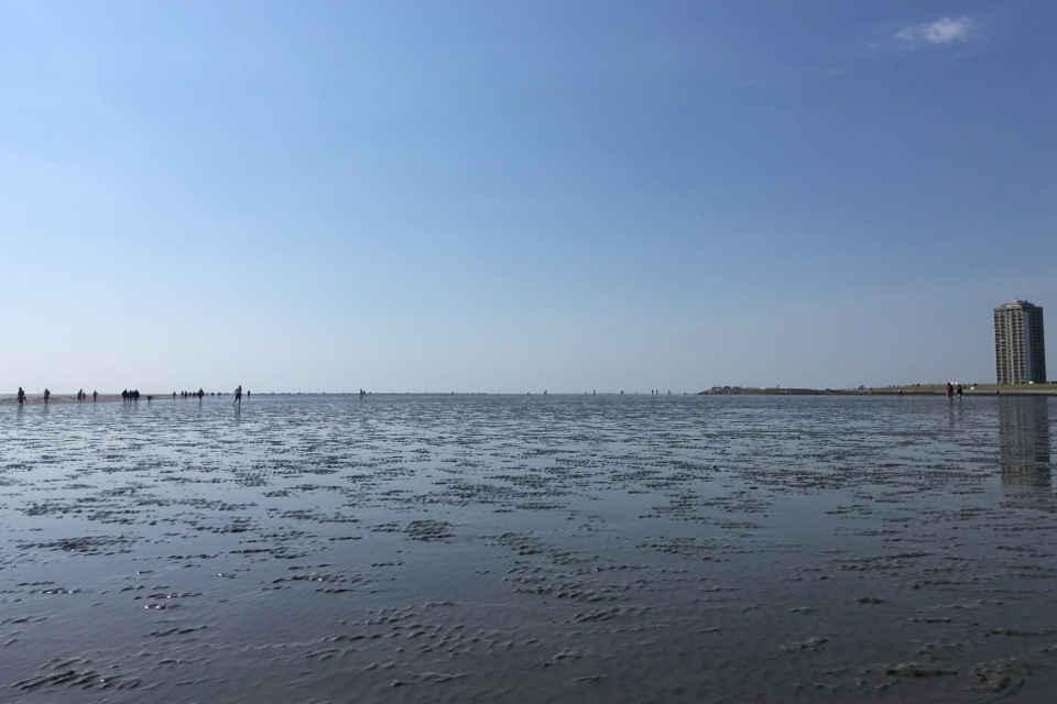 Weltnaturerbe Wattenmeer  buesumlivede