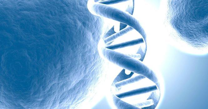 Juristas avalan el ADN para fines de identificación penal