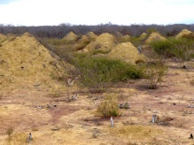 Large, earthen mounds on an otherwise flat landscape.