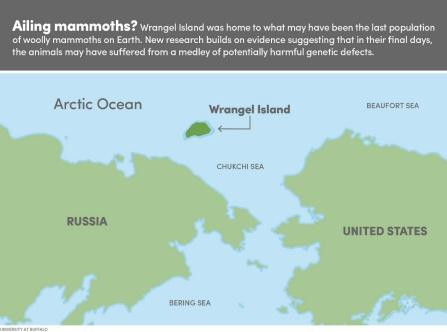 Map showing Wrangel Island, off the coast of Siberia.