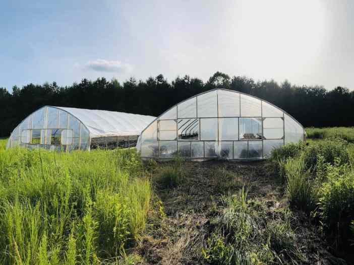 Two hoop style green houses in a grassy field