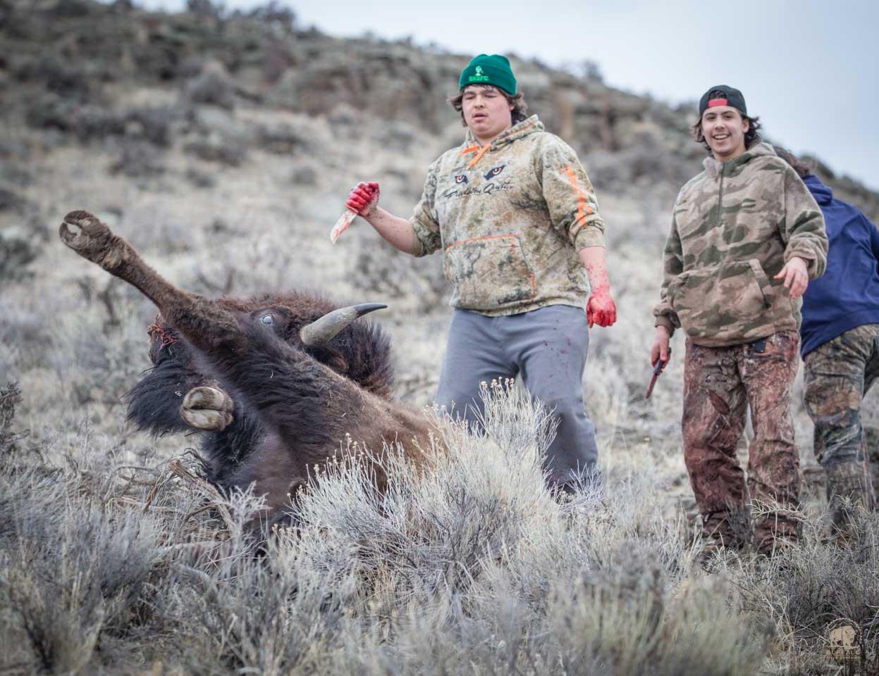 Bison Slaughter 6