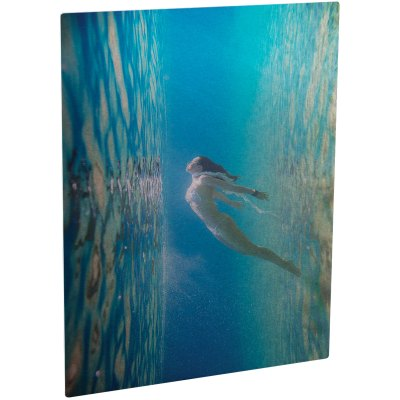 ChromaLuxe Glossy Clear/Silver Metal Photo Panel