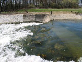 Jez Mohelnice - řeka Morava