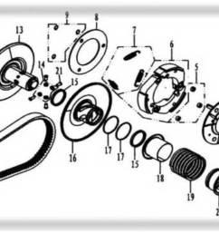 hammerhead 250ss super sport clutch assembly [ 1401 x 759 Pixel ]