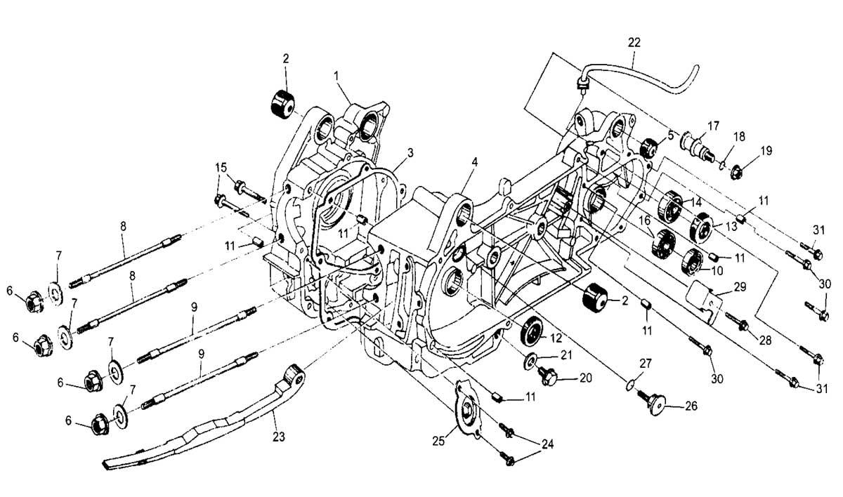 Hammerhead 250SS (Super Sport) Crankcase Assembly