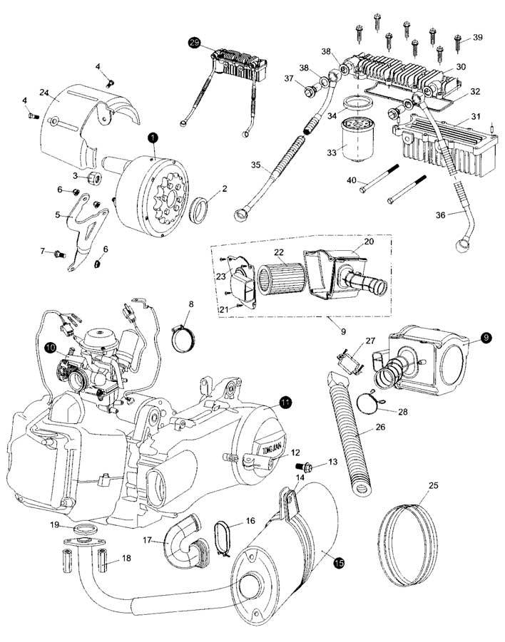 Twister Hammerhead 150 Engine Diagram Hammerhead Go Kart