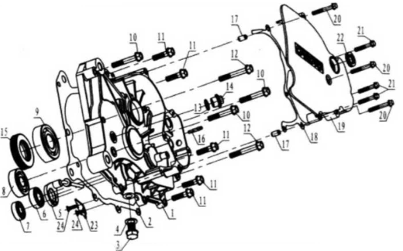 Hammerhead 250SS (Super Sport) Gear Box Cover Assembly