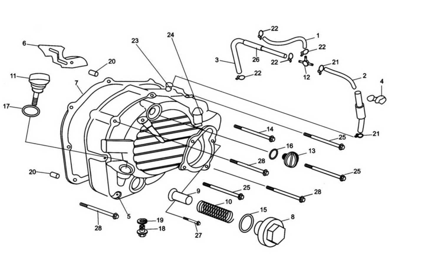 Hammerhead 250SS (Super Sport) Right Side Cover Assembly