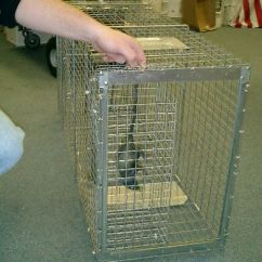 Air Conditioner Cage Bones Of The Foot And Ankle Diagram Live Bait For Use In Traps