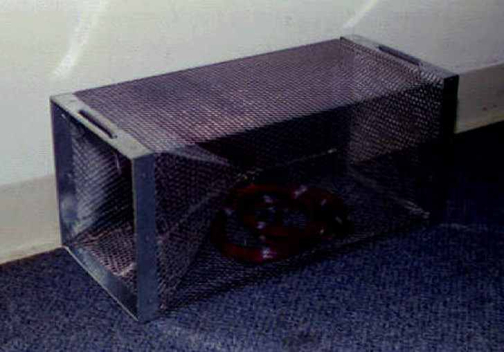 Snake Traps For Sale