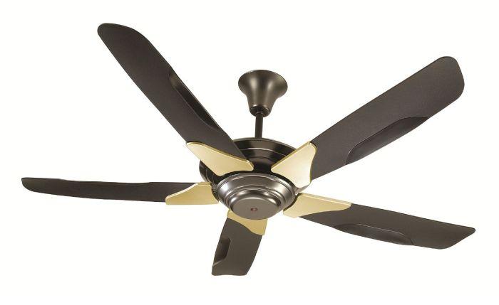 Is fan death for real?