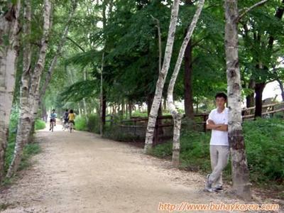 where bae yong joon and choi ji woo biked