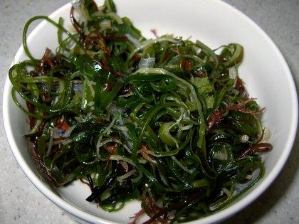 """Seaweeds or """"haecho"""""""