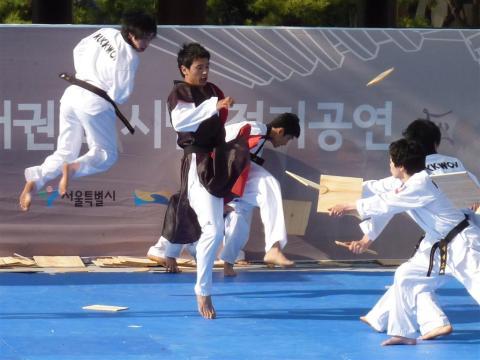 High flying kicks and wood breaking stunts