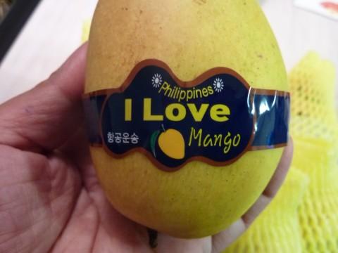 The best mango in Korea is from - www.ilovemango.co.kr