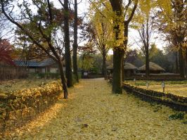 Fall in Korea at the Korean Folk Village