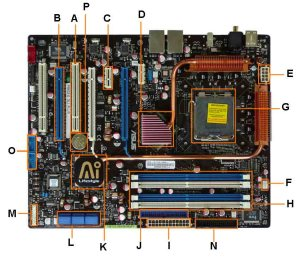 Motherboard Diagram: Identify Components for Motherboard