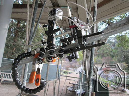 This rats nest of articulated clamps and a Gorilla Pod was juts the thing for this sequence.