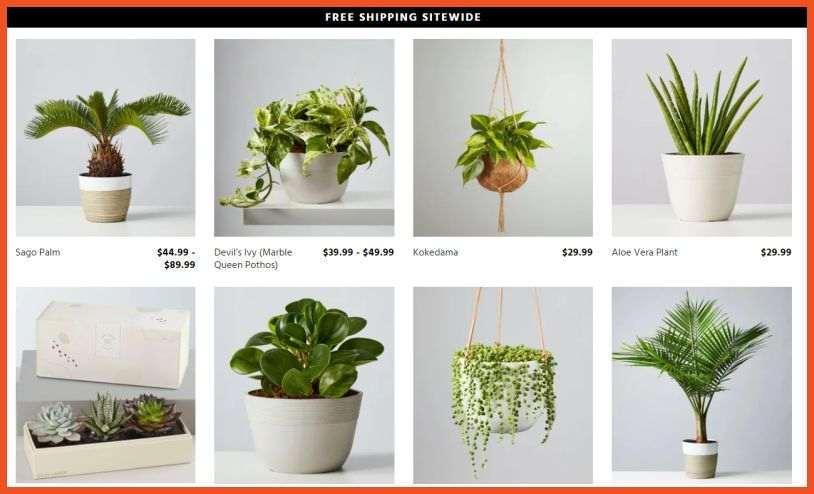 Plants.com Affiliate Program