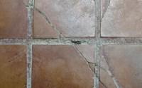Ceramic Tile Glaze Repair | Tile Design Ideas
