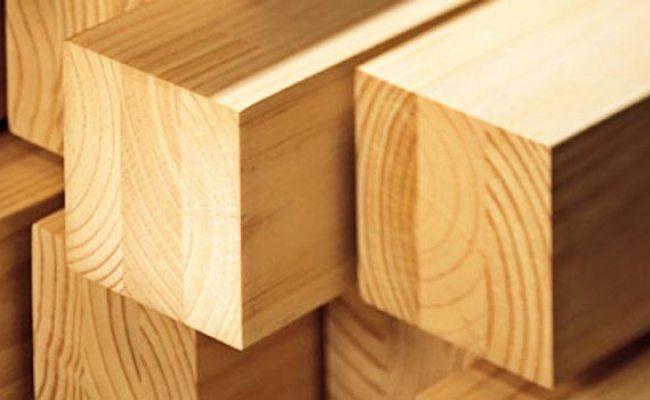 Kayu Pinus Inovasi Dunia Konstruksi Dan Bangunan Terkini