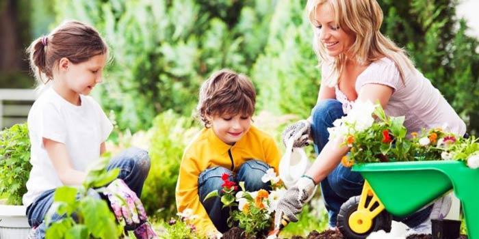 merawat taman di rumah