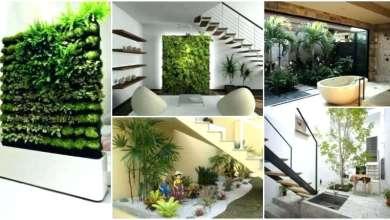 Photo of Taman Indoor, Bagaimana cara membuat taman dalam ruangan?