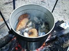 焚き火で作るキノコ汁